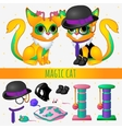 Yellow magic cat with accessories and toys vector image