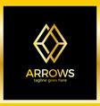 arrow rhomb line logo vector image