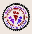 best quality wine rubber stamp with bunch of vector image vector image