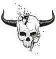 broken skull vector image vector image