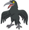 cartoon crow isolated on white background vector image vector image