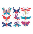 colorful cute insects set butterfly beetle bug vector image vector image