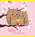 cute two owls sitting on a tree owlets drinking vector image