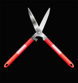 Garden shears vector image