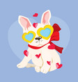 happy valentines day with cute french bulldog in vector image