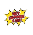 Hot summer sale banner design vector image