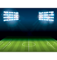Soccer Field Stadium vector image