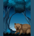 a wombat in dark forest vector image vector image