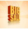 Big sale text vector image vector image