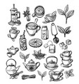 Collection hand drawn tea