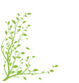 green tree branch branch silhouette isolated vector image vector image