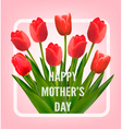 Red tulips with Happy Mothers Day gift card vector image vector image