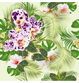 seamless texture tropical flowers spotted orchid vector image vector image