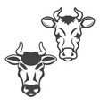 set cow heads isolated on white background vector image vector image