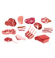 set of fresh meat icons vector image vector image