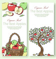 best apples fruit collection set banners vector image