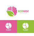 brain and leaf logo combination education vector image vector image