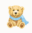 cute bear in a scarf sitting isolated vector image vector image