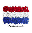 flag love netherlands flag heart glossy with vector image vector image