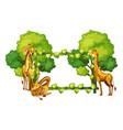 giraffe on nature frame vector image vector image