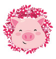 pig only face vector image vector image