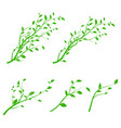 set green tree branch branch silhouette vector image