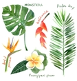 watercolor tropical plants vector image vector image
