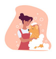 woman washing fur of domesticated animal with vector image vector image