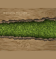 wooden background with shadows and grass vector image vector image