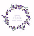 beautiful lavender wreath vector image