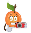 apricot with camera on white background vector image vector image