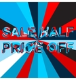 Big ice sale poster with SALE HALF PRICE OFF text vector image vector image
