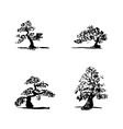 bonsai set1 vector image vector image
