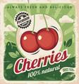 cherries vintage poster template vector image