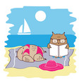 cute and funny owls on vacation vector image