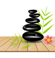 Hot stone massage on wooden table vector image