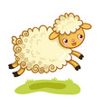 lamb plays in the meadow vector image vector image