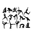 yoga activity silhouettes vector image vector image