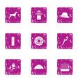 zoological garden icons set grunge style vector image