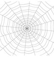 concentric white web on a white background vector image vector image