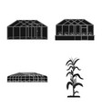 design of greenhouse and plant sign set of vector image