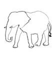 elephant wild animal safari african vector image vector image