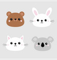 koala bear grizzly rabbit hare cat kitten head vector image vector image