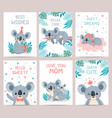 koala posters and cards prints with cute sleeping vector image