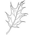 leaf of oak iberian contour vector image vector image