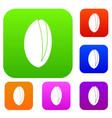 pistachio nut set color collection vector image vector image