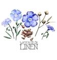 Watercolor linen set vector image vector image
