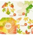 Autumnal Background Set vector image