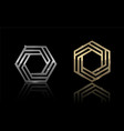 hexagon gold and silver 5 vector image vector image