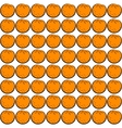 Seamless orange vector image vector image